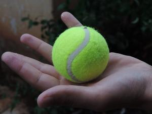 1f8e5-ball-455839_640